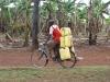 Transport von Wasser I